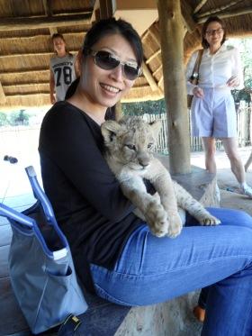 Cuddling a lion cub